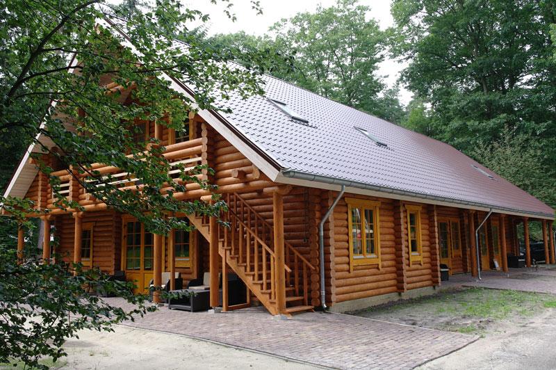 In de Drentse bossen | 23-30 juli